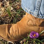 Boots and Bulbs