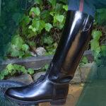 Dehner Boots as Art