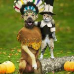 My Thanksgiving Thanks