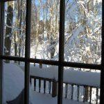Snowpocalypse II