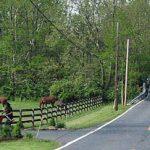 Twice Riding