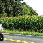 Non-Cop Motorcycle Escort
