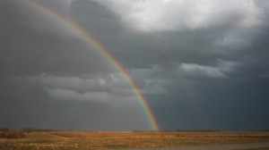 rainbowblog