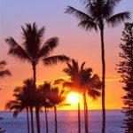 Meanwhile, on the Island of Hawaii